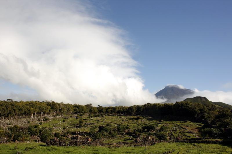 pico azores isla atlantico portugal viñedos corraletas