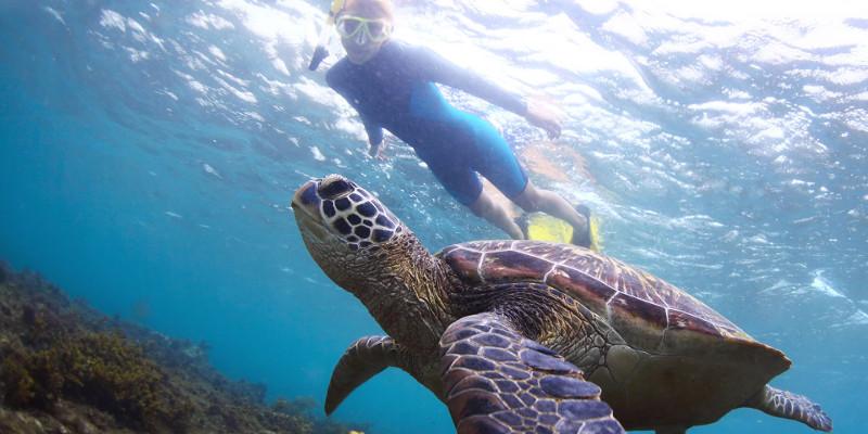 vacaciones kenia buceo turismo africa viaje