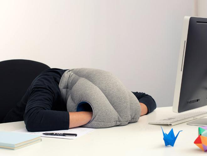 Cualquier lugar es bueno para una siesta