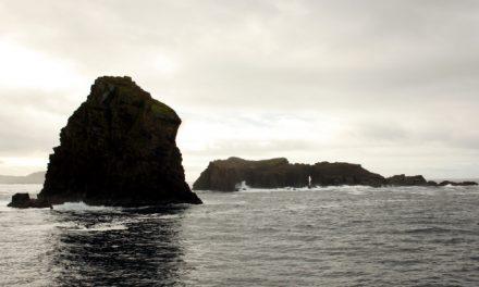 Las Azores (III) – Pico