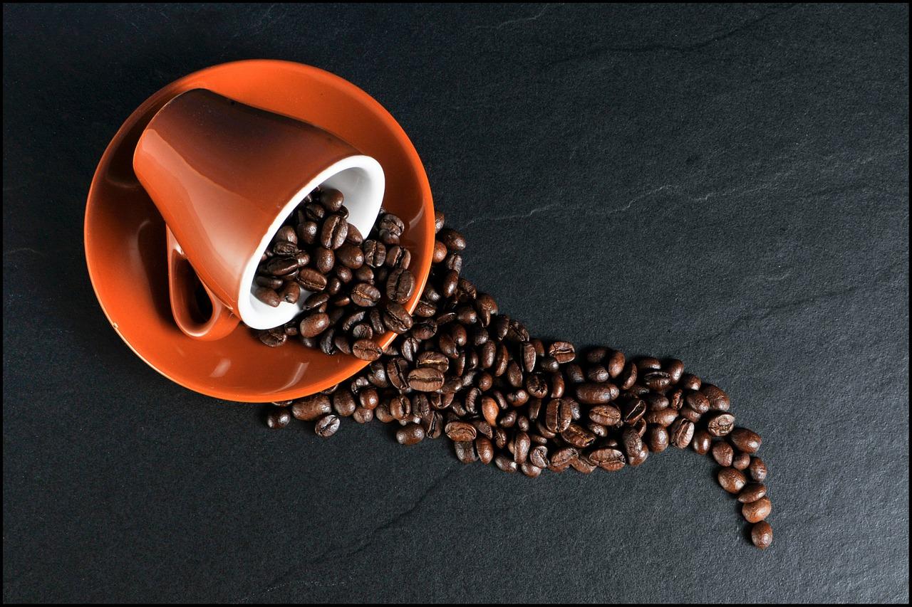 todo lo que siempre quisiste saber sobre el café
